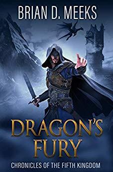 Dragon's Fury by Brian Meeks